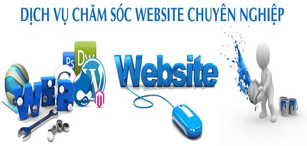 Dịch vụ quản lý website chuyên nghiệp, uy tín của Phong Việt