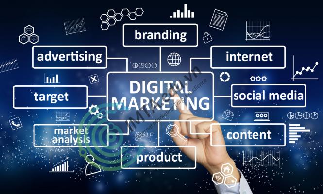 Dịch vụ Marketing tại Thái Nguyên, chiến lược Marketing cho doanh nghiệp !