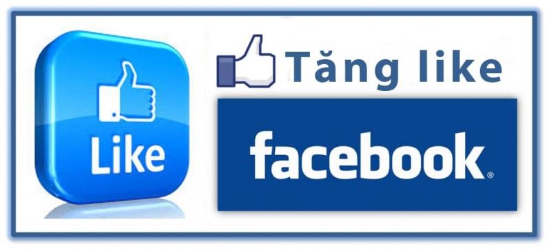 Dịch vụ tăng like bài viết giá rẻ cho Facebook chuyên nghiệp